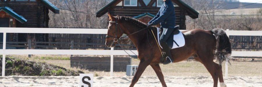 12.05.18 Внутриклубный турнир Весна в Темпе, манежная езда
